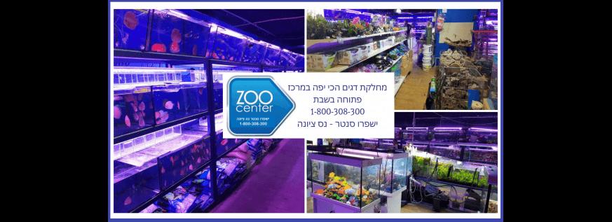 דגי-נוי-Zoo-Center